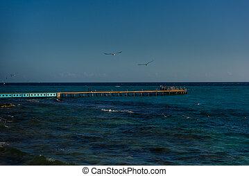 tenger, móló, képben látható, a, sziget, közül, mujeres.