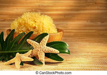 tenger szivacs, és, wooden pipafej