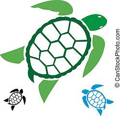 tengeri teknős, kép, vektor
