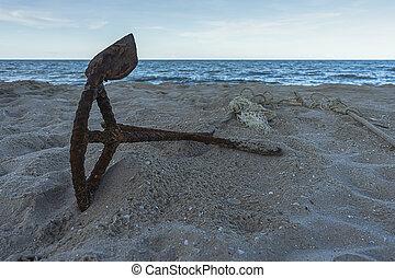 tengerpart, öreg, vasmacska, csónakázik