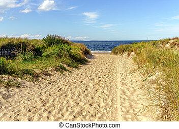 tengerpart, út