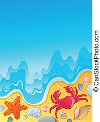 tengerpart, 2, állatok, tenger kihámoz