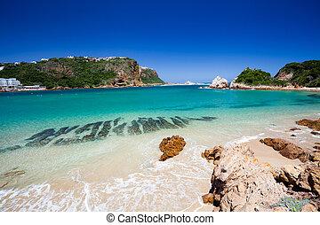 tengerpart, alatt, knysna, dél-afrika