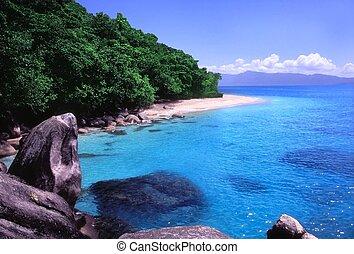 tengerpart, ausztrália, -, nudey, queensland