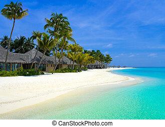 tengerpart, bungalows, képben látható, egy, tropical sziget