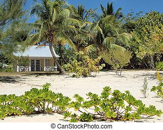 tengerpart, cayman sziget
