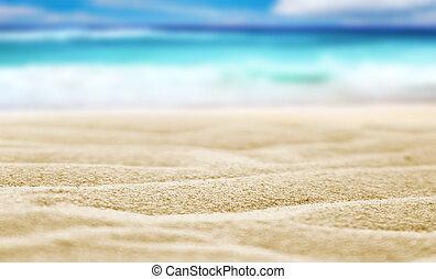 tengerpart homok
