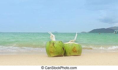 tengerpart., kókuszdió, homokos