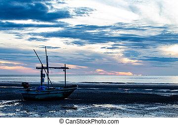 tengerpart., nap csillogó, reggel, tenger, csónakázik