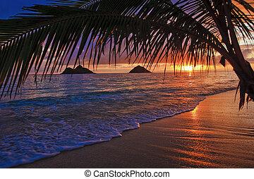 tengerpart, napkelte, lanikai, hawaii, békés