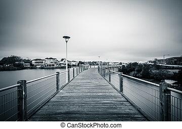 tengerpart, virginia., felett, virginia, tó, sétány, magyal
