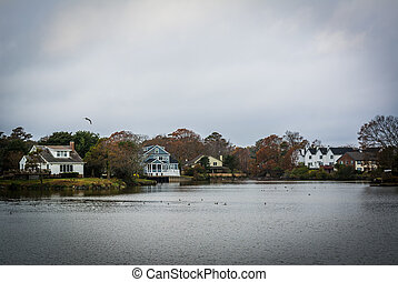 tengerpart, virginia., tó, virginia, épület, tengerpart, mentén, magyal