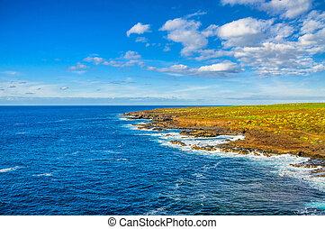 teno, tenerife, côte, north-west, îles, punto, canarian, ...