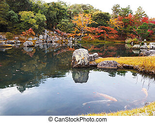 Tenryuji temple garden in autumn at Kyoto, Japan.