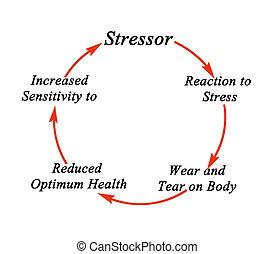 tensão, ciclo