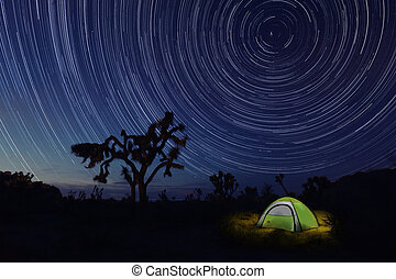 Tent Camping at Night in Joshua Tree Park