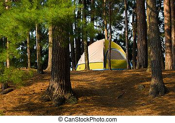 Tent Camping Campsite