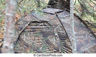 Tent deep in the forest - camouflaged tent is deep in spruce...
