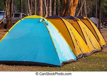 Camping - Tent in Camping. Recreation site.