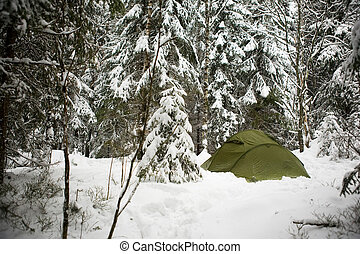 Tent in Snow - A tent in the forest during winter