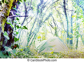 Tent on a Sunny glade in the deciduous forest