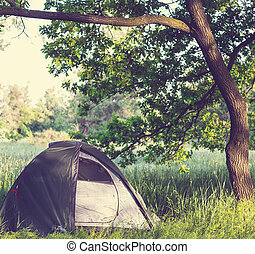 Tent on grassland - tent on green grassland