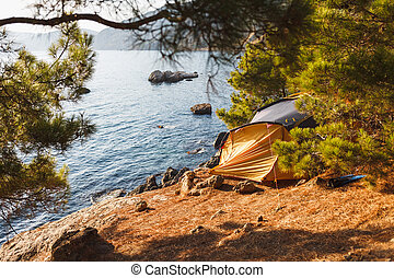 Tent on the beach under the sun in the shade of junipers