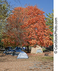Tents at Campground in the Autumn