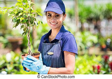 tenue, plante, potted, jardinier, femme
