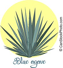 Tequila agave or blue agave vector illustration - Tequila...