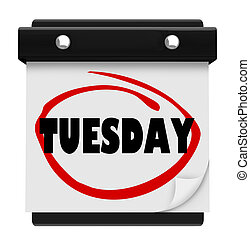 terça-feira, palavra, circundado, ligado, calendário parede, dia, de, semana