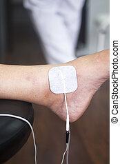 terapia física, acupunture