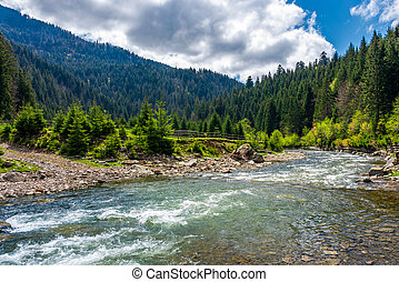 Tereblya river of Carpathan mountains. Beautiful springtime...