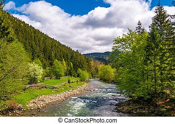 Tereblya river of Carpathan mountains. Beautiful springtime...
