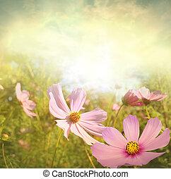 terep of virág