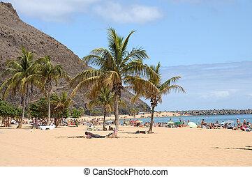 teresitas, 島, de, カナリア, playa, tenerife, スペイン, las