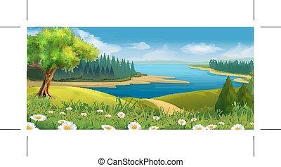 természet parkosít, folyik, völgy, vektor, háttér