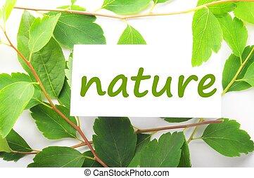 természet