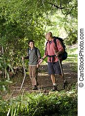 természetjárás, spanyol, atya, fiú, nyom, erdő