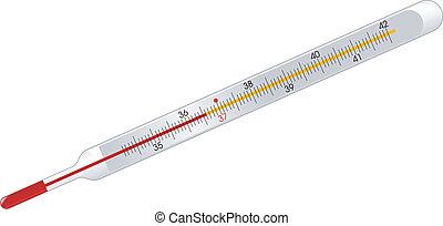 termómetro del mercurio