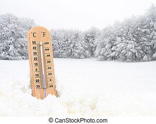 termómetro, en, el, nieve