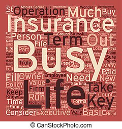 Term Life Insurance For Business Owners Or Key Executives text background wordcloud concept
