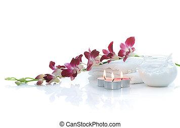 terme, con, orchidea