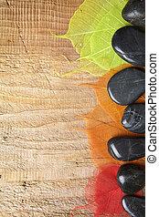 terme, cornice, con, pietre, e, foglie