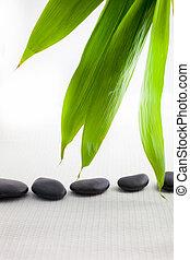 terme, massaggio, pietre, con, fresco, bambù, foglie