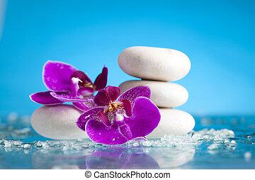 terme, natura morta, con, orchidea colore rosa, e, bianco,...