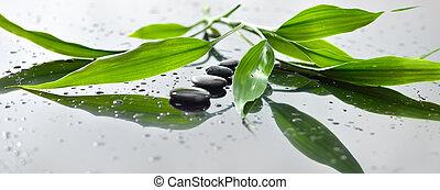 terme, natura morta, con, zen, pietra, e, bambù, per, bandiera