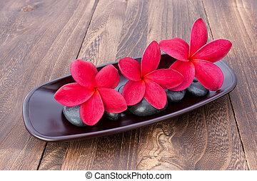 terme, pietra, concetto, legno, wellness, tre, tropicale, plumeria, frangipani, tavola