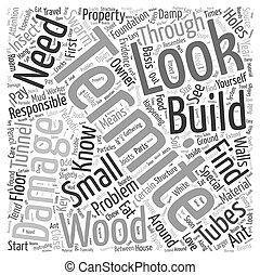 Termite Damage Word Cloud Concept
