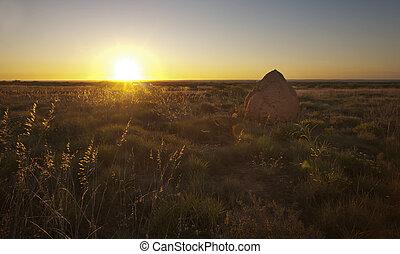 Termite Mound at Sunset